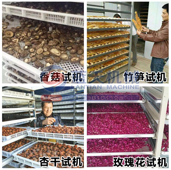 大型蔬菜er号站appzhu册机试机现chang